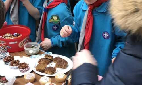 beaver scout fundraising