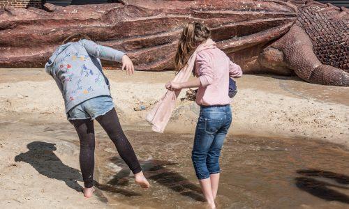 girls paddling