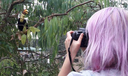 Young woman with lilac hair taking photograph