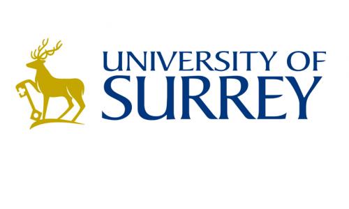 Surrey Uni Logo