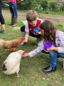 Boy and girl feeding chickens